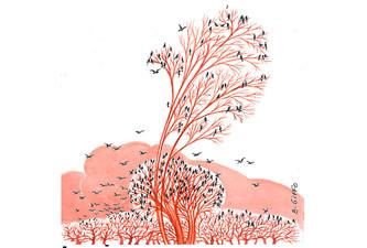 Oiseaux et arbre rouge 5