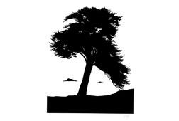 L'arbre du Rheun