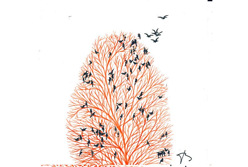 Envolée d'oiseau