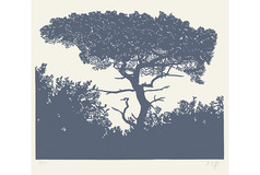 Sur la branche 1