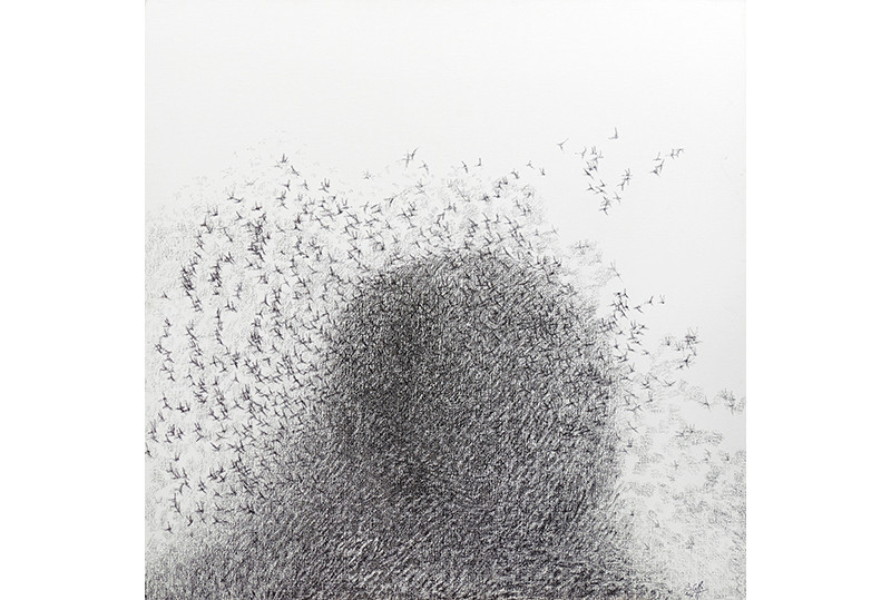 Migration 2