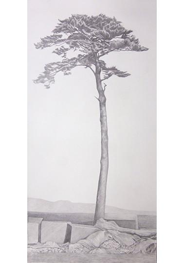 Répliques 2, L'arbre