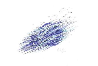 Migration des oiseaux 3