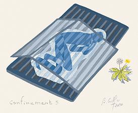 Confinement 5