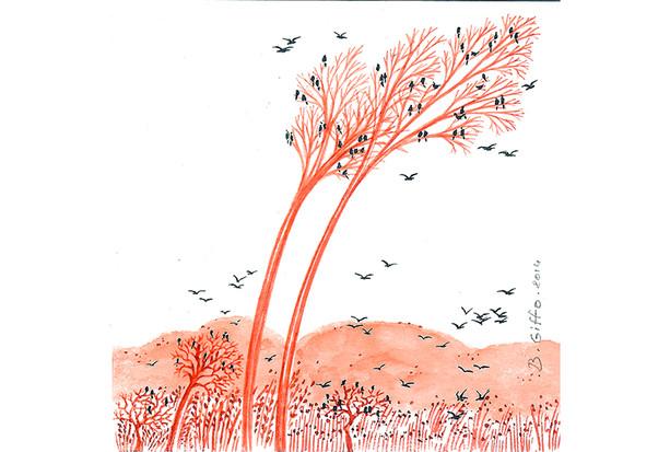 12 oiseau et arbre rouge 3-2014-aquarellOiseaux et arbre rouge 6