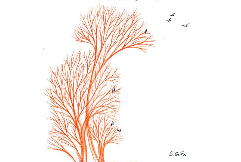 Oiseaux et arbre rouge 3