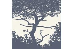 Sur la branche 2