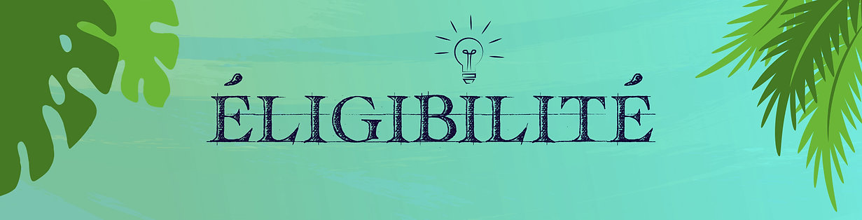 B_Eligibilité_REM_V1.jpg