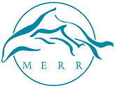 MERR Institute.png