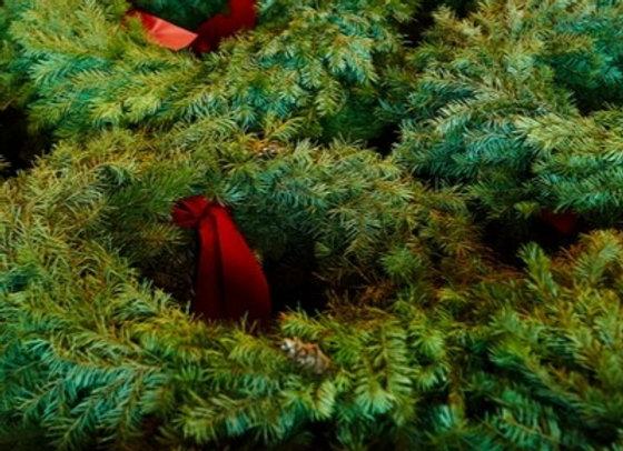 Colorado Douglas Fir Wreath