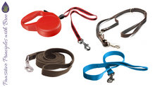 What leash do you use?