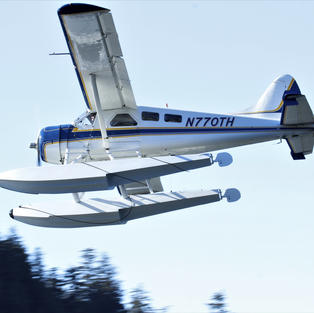 DHC-2 N770TH