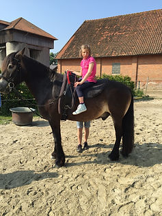 Marie Pferd.JPG