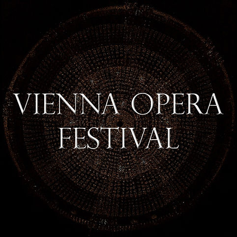 Vienna Opera festival.jpg