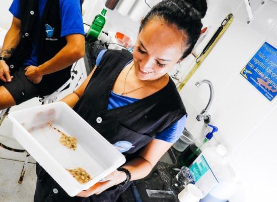 Imagem mostra a veterinária segurando uma bandeja com duas raias. Ao fundo vemos que ela está em um laboratório.