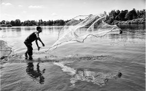 Foto em preto e branco, mostrando um homem com os pés submersos na água de um rio e jogando uma rede de pesca aberta no rio. Ao fundo da imagem há vegetação.