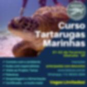 Tartarugas Marinhas (1).jpg