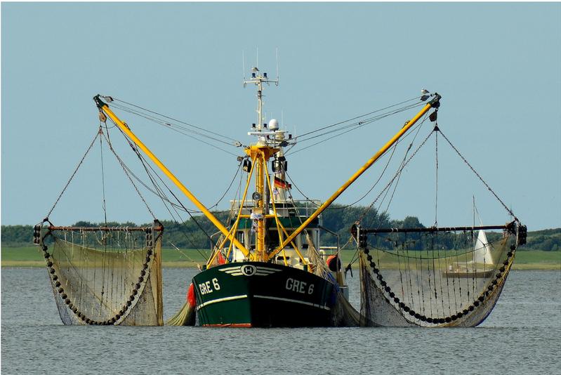 Foto de uma embarcação com dois guindastes, um de cada lado, segurando duas redes de pesca.