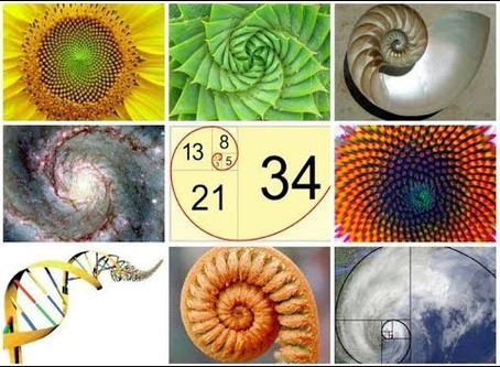 Good as Gold: The Fibonacci Sequence, the Golden Ratio, and More!
