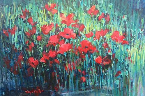 Poppies Dark - Coquelicots Sombre