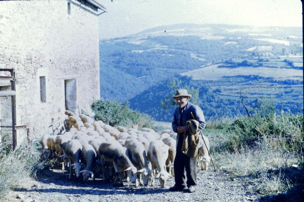 Sheep Farmer, 1950s, La Grange, Puech Gazal, Midi-Pyrenees, originally used for sheep and hay.