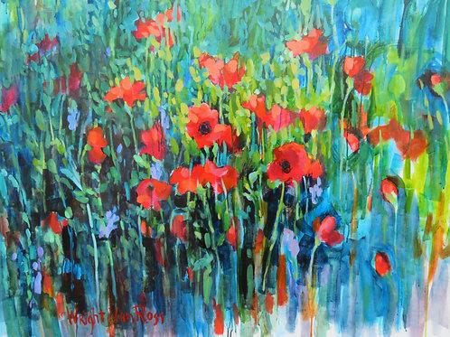 Poppies - Temps des Coquelicots
