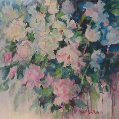 43_Backyard Rose - Cour Roses