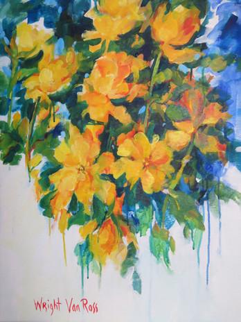 61_Yellow Roses