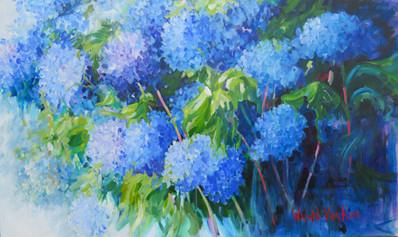 54_Blue Hydrangias, Hortensias Bleu