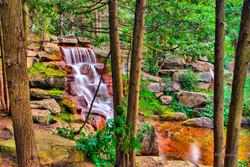 Waterfall Through The Trees.jpg