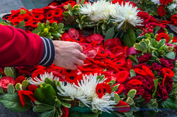 Remembrance Day - 2016  31