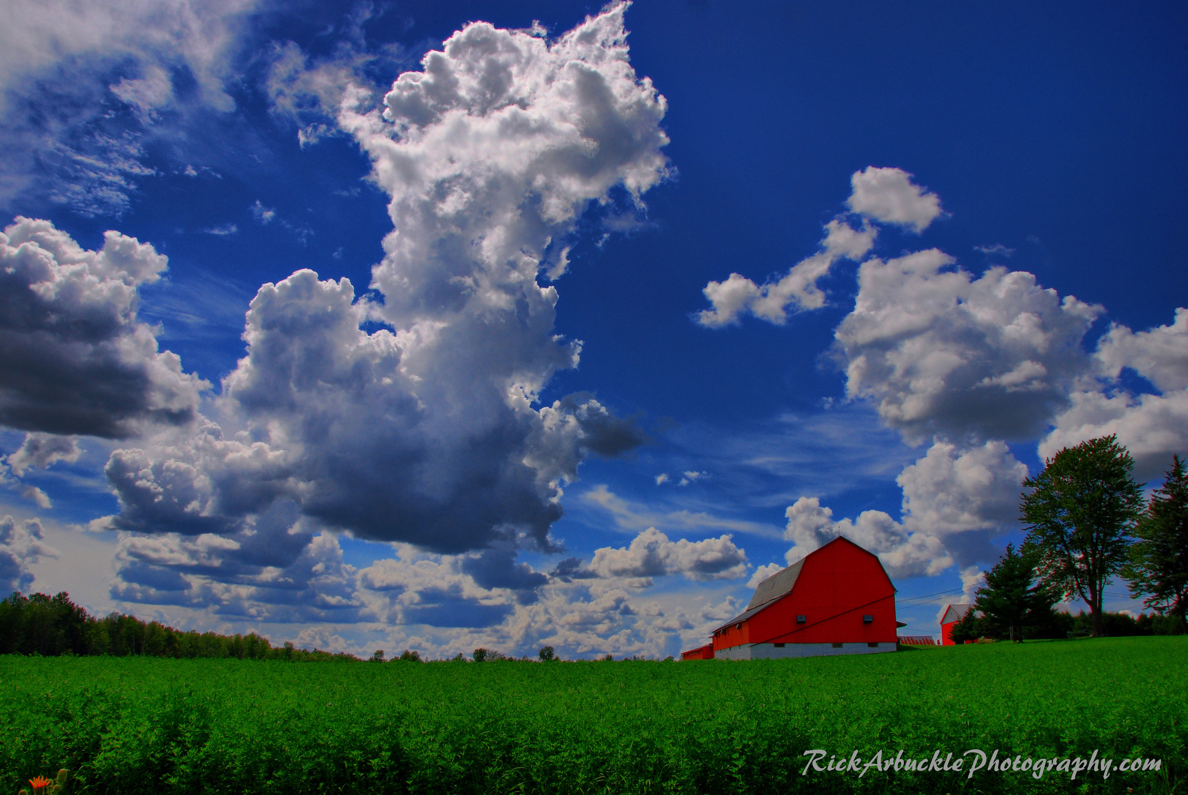 Summer Clouds Over Field and Barn