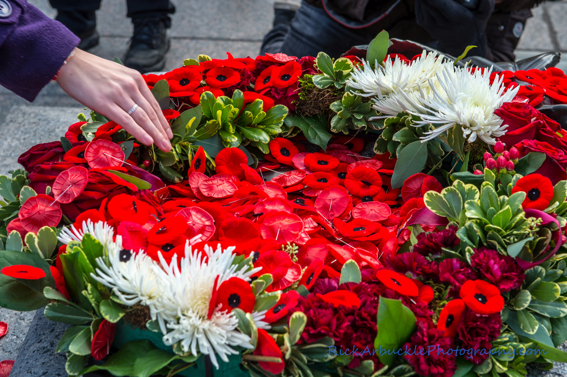Remembrance Day - 2016  30