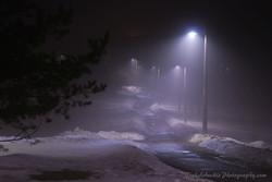 Foggy Winter Walkway copy.jpg