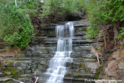 Cascading Waterfall With Evergreens