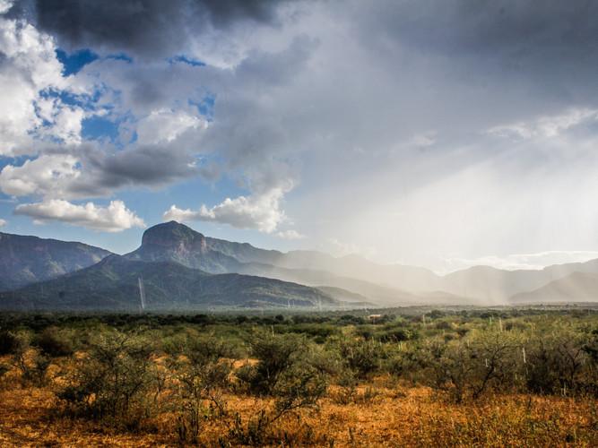 Rainfall in the desert