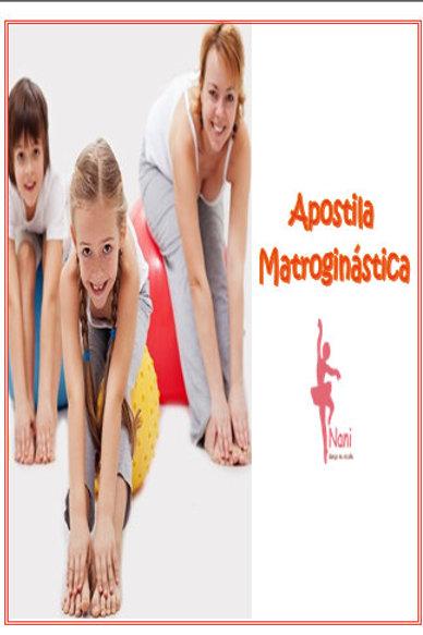 Apostila Matroginática