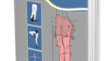 Parcerias que dão certo - livro Aprenda Tudo Sobre Ballet Clássico VOL I