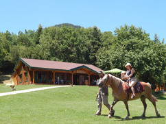 saloon-park-riding-01.jpg