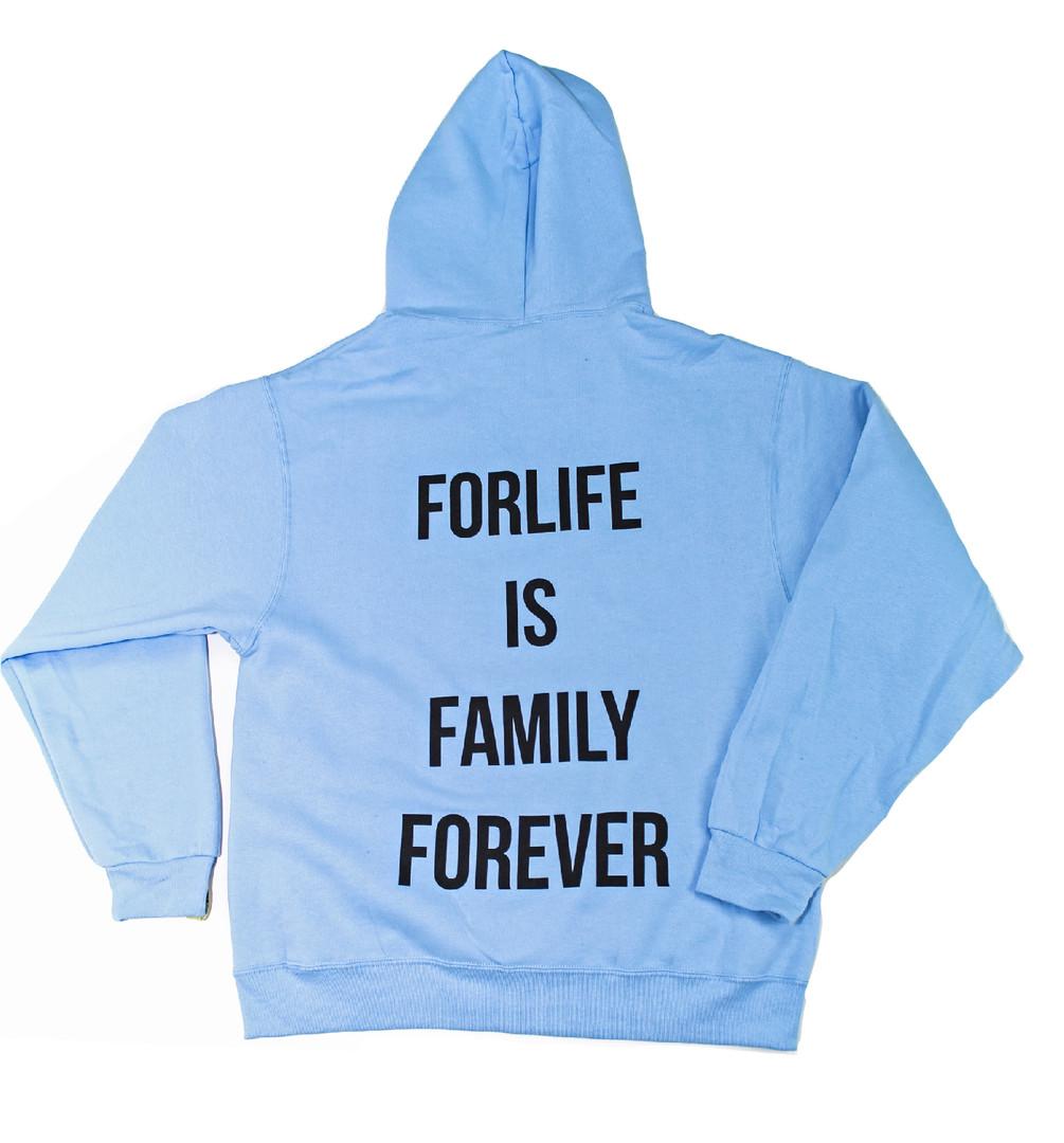Baby Blue Big Logo Hoodie