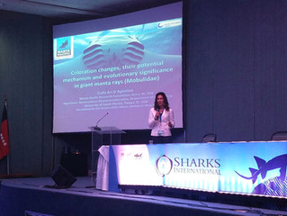 Sharks International Conference in Brazil