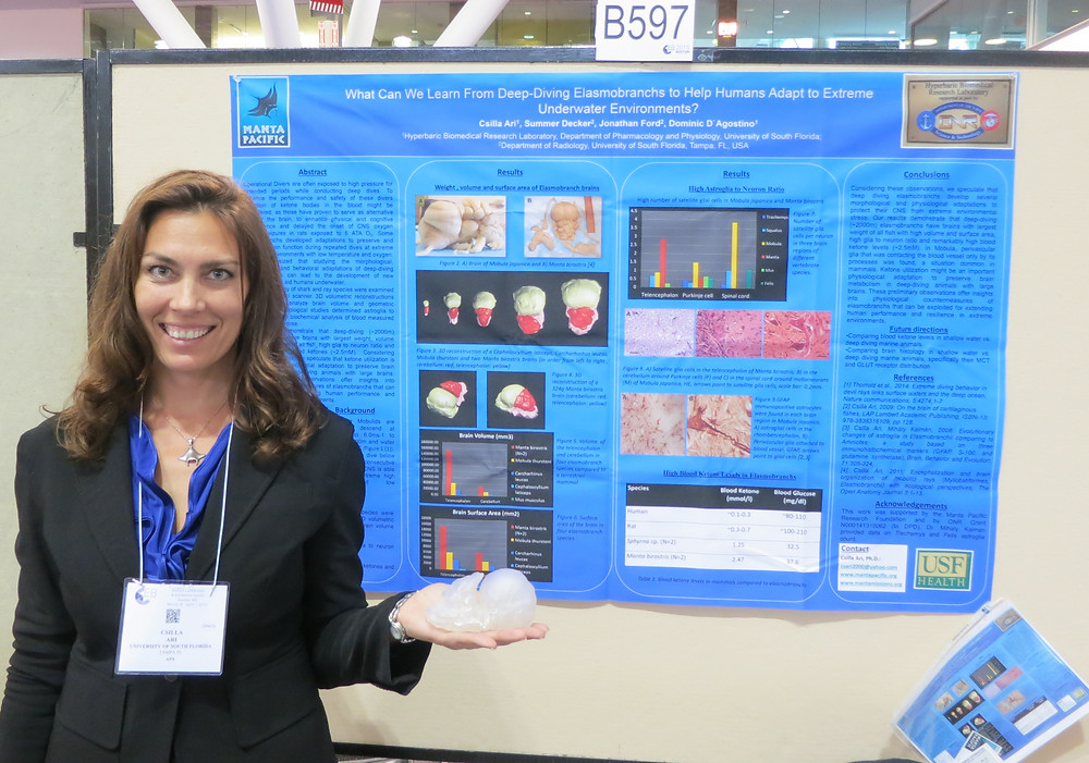 Dr. Csilla Ari in front of her poster with a 3D printed manta ray brain model in her hand