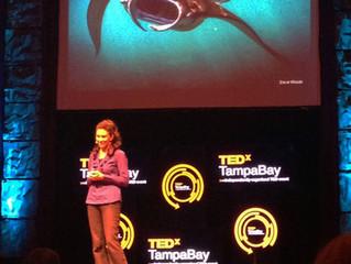 TedXTampa Bay Talk 2013