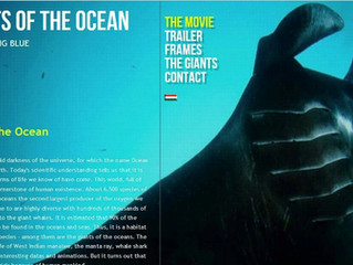 Our manta researcher is featured in The Giants of the Oceans movie