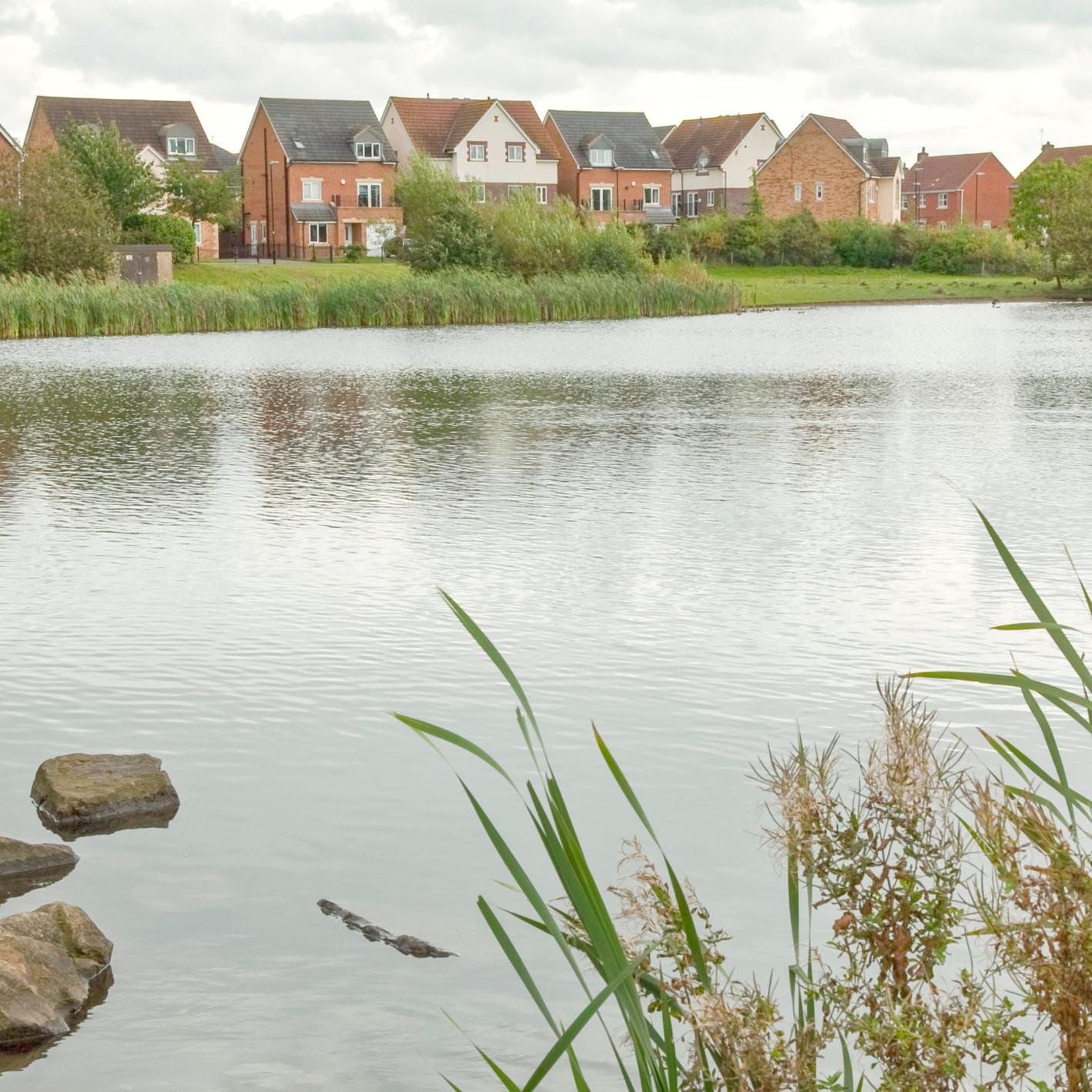 Cortonwood across the lake cc_edited.jpg