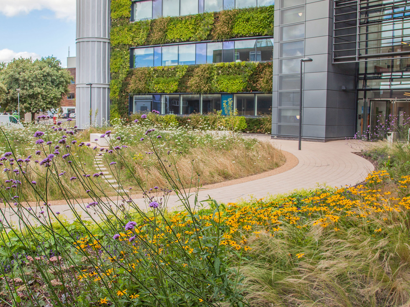 York University Environment Building