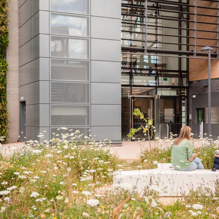 York University School of Environment & Geography