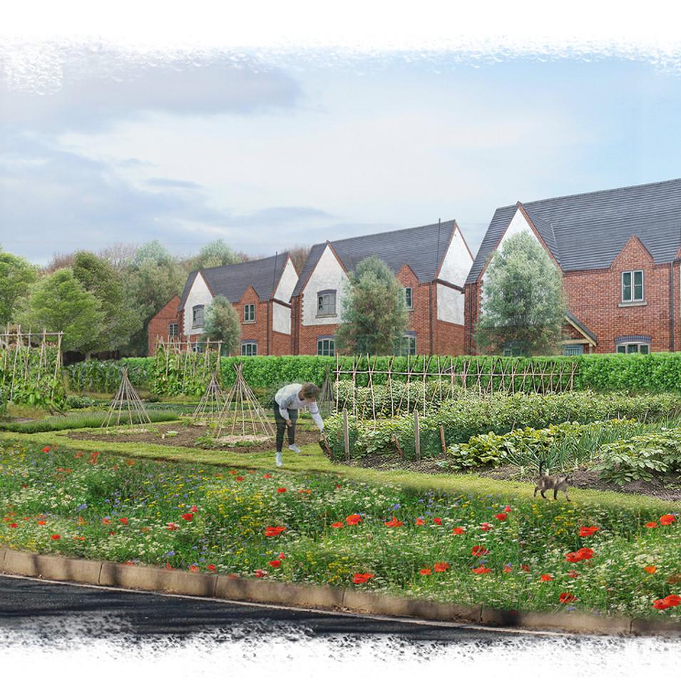 Grimsby urban extension - Allotment gardens