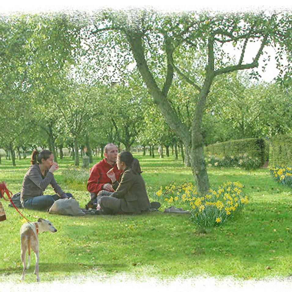 Grimsby urban extension - Orchard gardens
