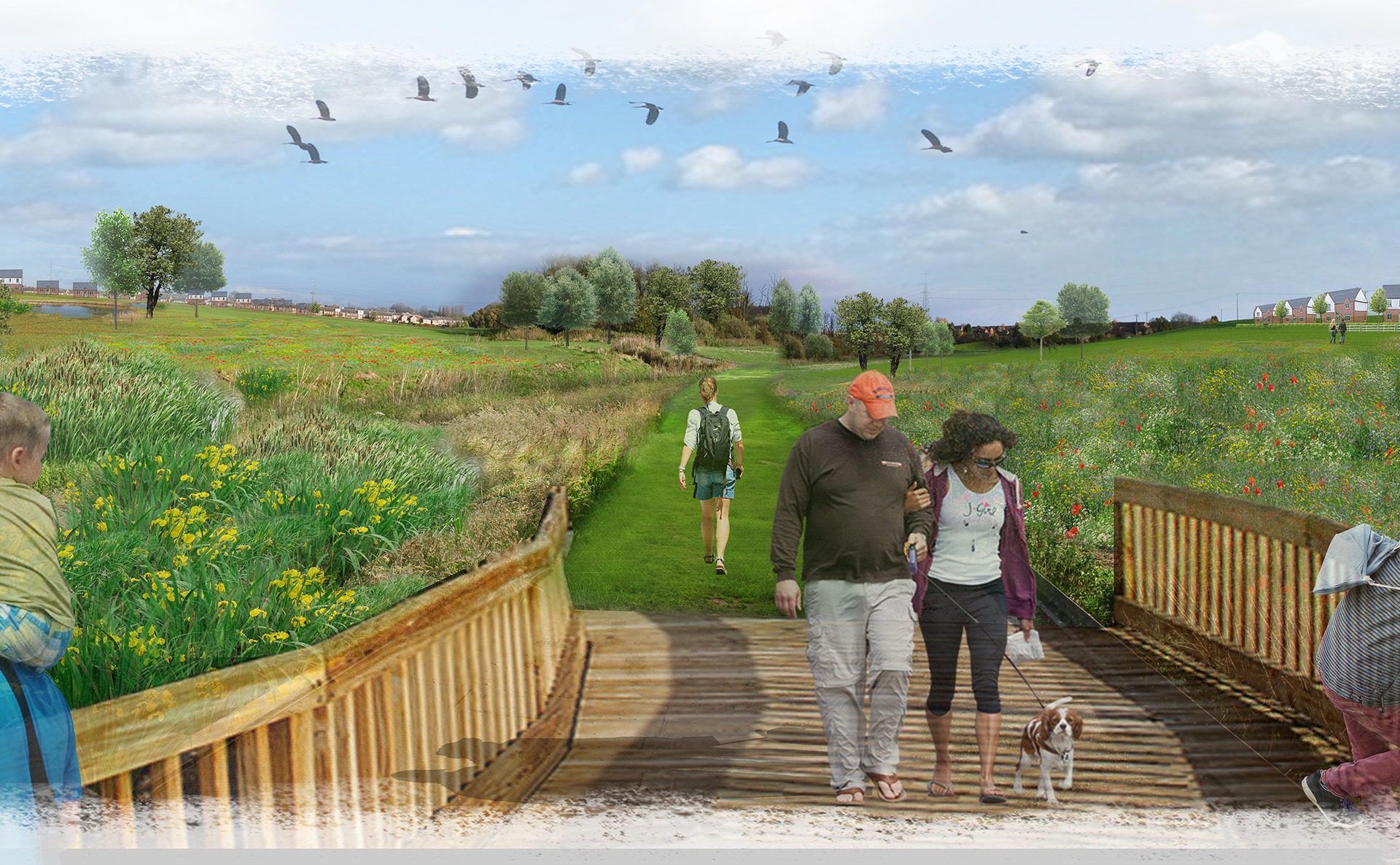 Grimsby urban extension - Multi-functional landscapes